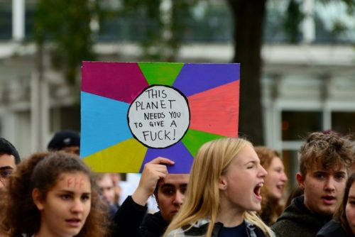 Auf dem Bild sind demonstrierende Kinder zu sehen, sowie ein Plakat mit der Aufschrift the planet needs you to give a fuck